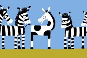 Foto: Zebra